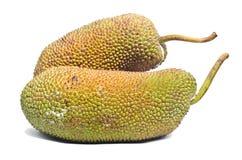 Jackfruit fruit. Royalty Free Stock Photos