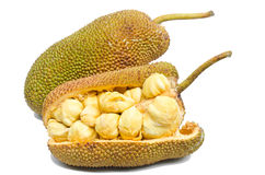 Jackfruit fruit. Royalty Free Stock Photography