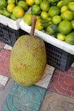 Jackfruit i marknad Royaltyfri Bild