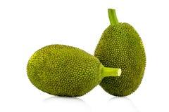 Jackfruit isolated on white background royalty free stock photo