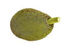 Jackfruit isolato su priorità bassa bianca Fotografie Stock