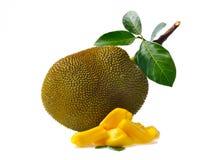 Jackfruit isolato su priorità bassa bianca immagine stock libera da diritti