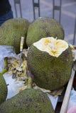 Jackfruit Jack Fruit Stock Fotografie