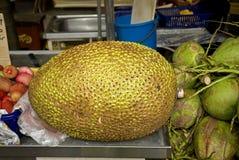 Jackfruit, Penang, Malaysia Royalty Free Stock Image
