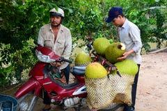 Jackfruit pickers. Mekong delta. Cai Be. Vietnam Royalty Free Stock Photography
