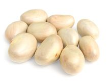 Jackfruit seeds. Over white backgruind Royalty Free Stock Images