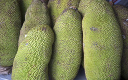 Jackfruit selling Stock Images