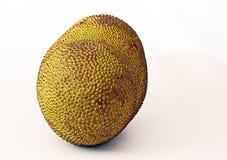 Jackfruit Royalty Free Stock Photography