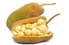 Jackfruitfrukt. royaltyfri fotografi