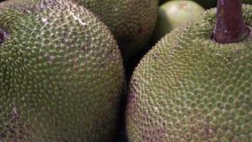 Jackfruits gigantes na prateleira da loja no supermercado video estoque