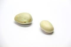 Jackfruitzaden Stock Afbeelding