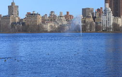 Jackie Onassis Reservoir in Central Park, New York Stock Afbeeldingen