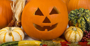 Jacko and friends. Jack o lantern with fall harvest stock photos
