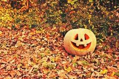 ` Jacks O Laternenkürbis für den Halloween-Hintergrund Lizenzfreies Stockfoto