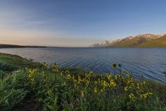 Jackson湖怀俄明 库存图片
