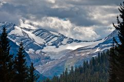 Jackson Glacier thru opening in trees Royalty Free Stock Photography