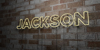 JACKSON - Glowing Neon Sign on stonework wall - 3D rendered royalty free stock illustration. Can be used for online banner ads and direct mailers Stock Image