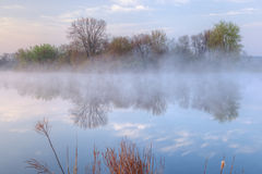 Jackson Hole Lake in Fog Stock Photos