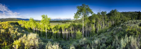 Jackson Hole Valley Stock Images