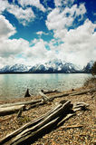 Jackson Lake, Grand Teton National Park Stock Image