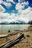 Jackson Lake, Grand Teton National Park Stock Image