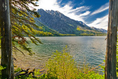 Jackson Lake and Grant Tetons Royalty Free Stock Photo