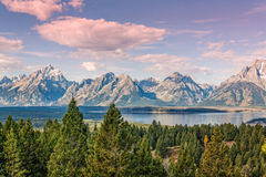 Jackson Lake Landscape in Fall Royalty Free Stock Photography