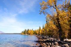 Jackson lake in Wyoming Royalty Free Stock Photos