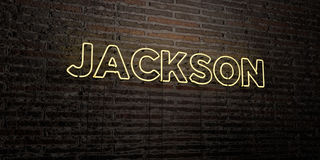 JACKSON -Realistic Neon Sign on Brick Wall background - 3D rendered royalty free stock image. Can be used for online banner ads and direct mailers Royalty Free Stock Photo