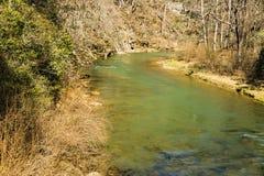 Jackson River de Beste Forel die in de Staat van Virginia, de V.S. vissen stock foto's