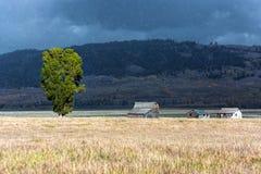 JACKSON, WYOMING/USA - 30 SEPTEMBER: Mening van Mormoonse Rij dichtbij Ja Stock Foto's