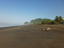 Jaco, Costa Rica Royalty-vrije Stock Foto's