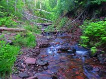 Jacobs Creek Northwoods Michigan Royalty Free Stock Images