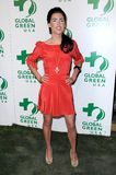 Jacqueline MacInnes Wood bij de 6de Jaarlijkse Partij pre-Oscar van de Globale Groene V.S. Avalon Hollywood, Hollywood, CA. 02-19- Royalty-vrije Stock Afbeeldingen