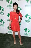 Jacqueline MacInnes Wood at Global Green USA's 6th Annual Pre-Oscar Party. Avalon Hollywood, Hollywood, CA. 02-19-09 Royalty Free Stock Photo