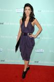 Jacqueline MacInnes Wood at the World Premiere of 'He's Just Not That Into You'. Grauman's Chinese Theatre, Hollywood, CA. 02-02-0 Stock Image
