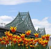 Jacques Cartier Bridge Royalty Free Stock Photo