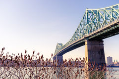 Jacques-Cartier Bridge in Montreal Royalty Free Stock Photo