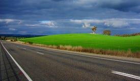 Jadący, Wibrująca zieleń, Burzowy niebo Zdjęcie Stock