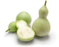 Jadalna zielona kalabasa zdjęcie royalty free