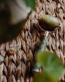 Jade Body Roller royaltyfria foton
