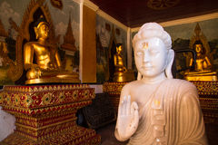 Jade branco buddha Foto de Stock