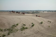 Jade Lonza Lake Park, chifeng city, Inner Mongolia, China in cross-country, camel riding and skateboarding sand Royalty Free Stock Image