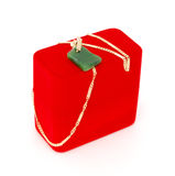 A jade necklace gif Royalty Free Stock Images