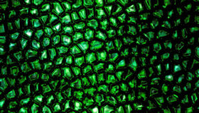 Jade scale pattern Stock Image