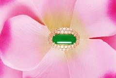 jadeitu pierścionek Zdjęcia Stock