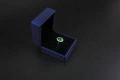 Jadesmyckenfotografi arkivfoto