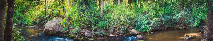 Jae Son Hot Springs och vattenfall Fotografering för Bildbyråer