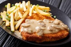 Jaeger schnitzel with sauce and garnish of french fries close-up. On plate on table. horizontal Royalty Free Stock Images