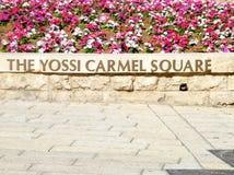Jaffa Yossi Carmel Square 2010 Royalty Free Stock Photos